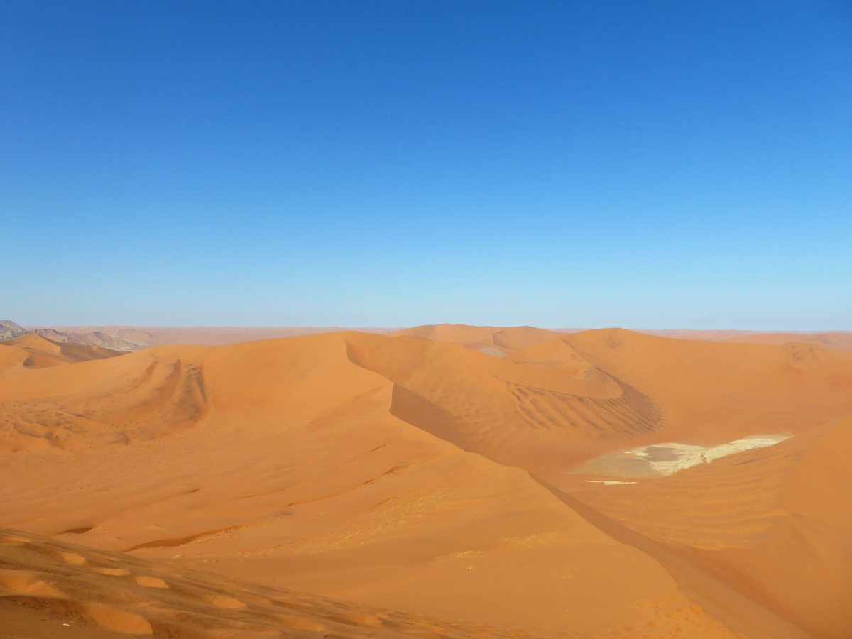 Silence of the Sand: Adventures in the Namib Desert